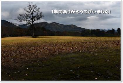 Dsc_76802_mini